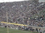 The Crowd doing the Wave at the Notre Dame game